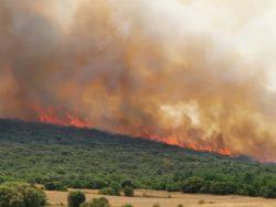 Importante incendio en la localidad de Colina, en la Junta de Traslaloma