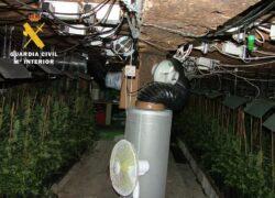 """La Guardia Civil desmantela en Las Merindades una plantación """"indoor"""" de marihuana con 617 plantas"""