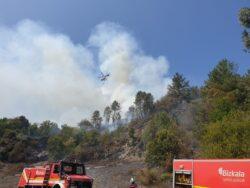 Bomberos de Vizcaya y Castilla y León combaten un fuego forestal en Balmaseda